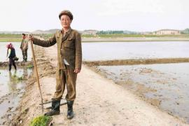 #59. RI YONG GI, 42, Water Regulator, Chonsamri Co-operative Farm.