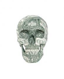 头骨 - 美元