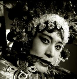 chinese19-sma