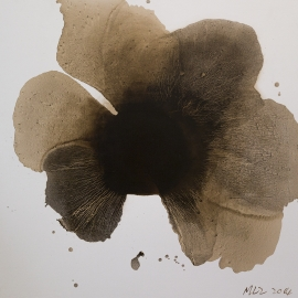 Ambiguous Flower